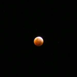 Lunar eclipse August 28th, 2007 from Sydney Park, St Peters, Sydney